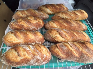 pain au levaine